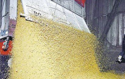 La cosecha de soja batió un nuevo récord.