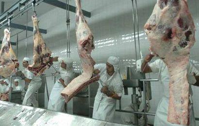 Casamiquela confirmó que hay 18 frigoríficos en condiciones de exportar.