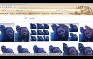 Google se disculpa por etiquetar a gente negra como gorilas en Google Fotos