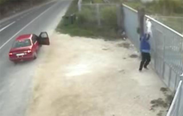 Abandono de un perro en la protectora Os Palleiros, en Pontevedra.