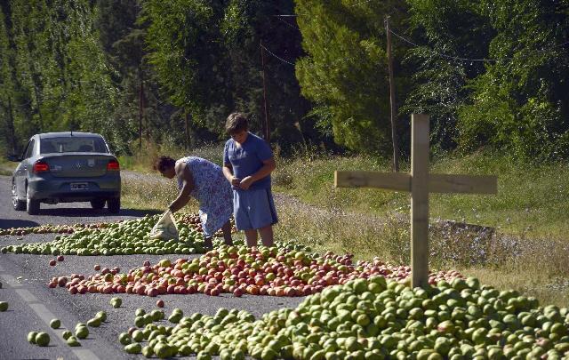 Productores arrojaron toneladas de peras a la vera de la ruta (Foto: Archivo)