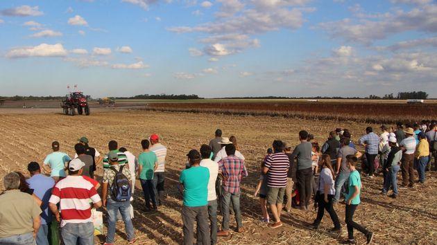 FOTO: La exposición significa una desafío a raíz de la situación agronómica que vive Chaco