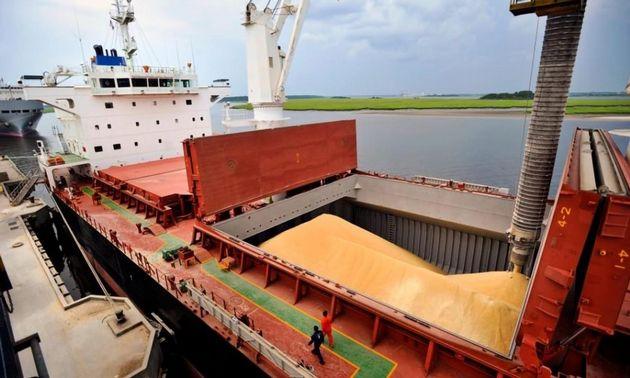 Exportaciones del agro