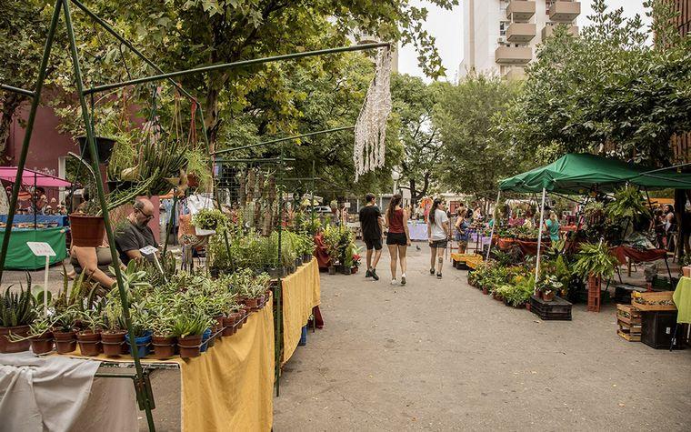 FOTO: Paseo de las Pulgas Córdoba