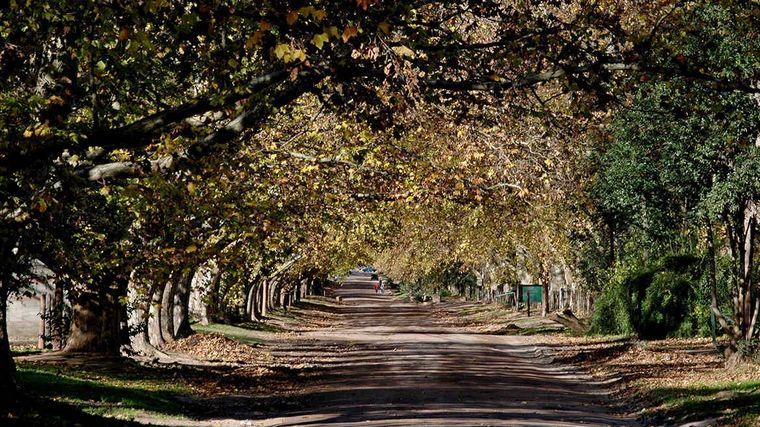 FOTO: Camino Real Norte de Córdoba