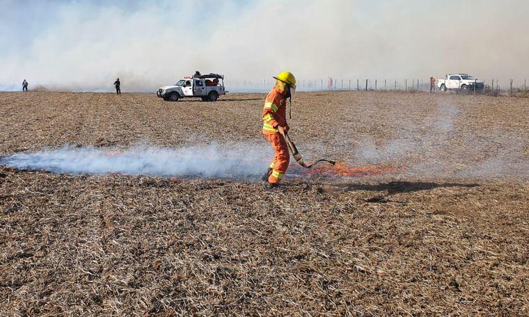 FOTO: Se quemaron 5 hectáreas de trigo, y 30 de maíz.