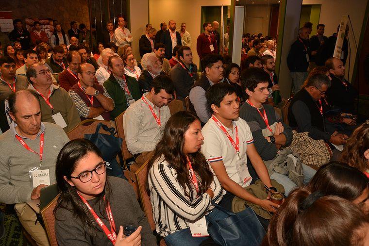 AUDIO: Sergio Rafaelli - Presidente Cámara de Legumbres de la República Argentina