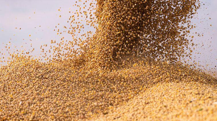 AUDIO: Sofia Calamante, Bolsa de Cereales de Córdoba
