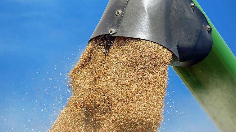 AUDIO: Rocío López, Bolsa de Cereales de Córdoba