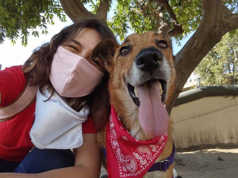 FOTO: Discas es una organización que trabaja con animales con discapacidad