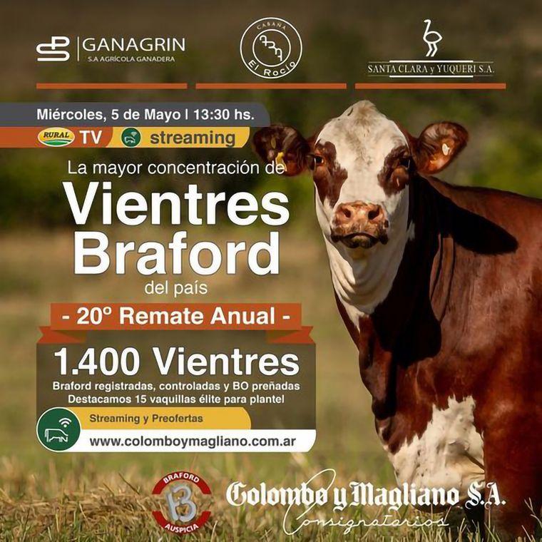 AUDIO: Ricardo Freyre, Remate de Vientres Braford