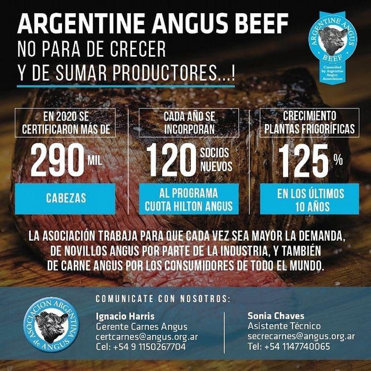 AUDIO: Alfonso Bustillo, vicepresidente primero de Asociación Angus