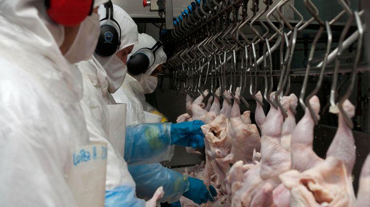 AUDIO: José Domench, Centro de Empresas Procesadoras Avícolas