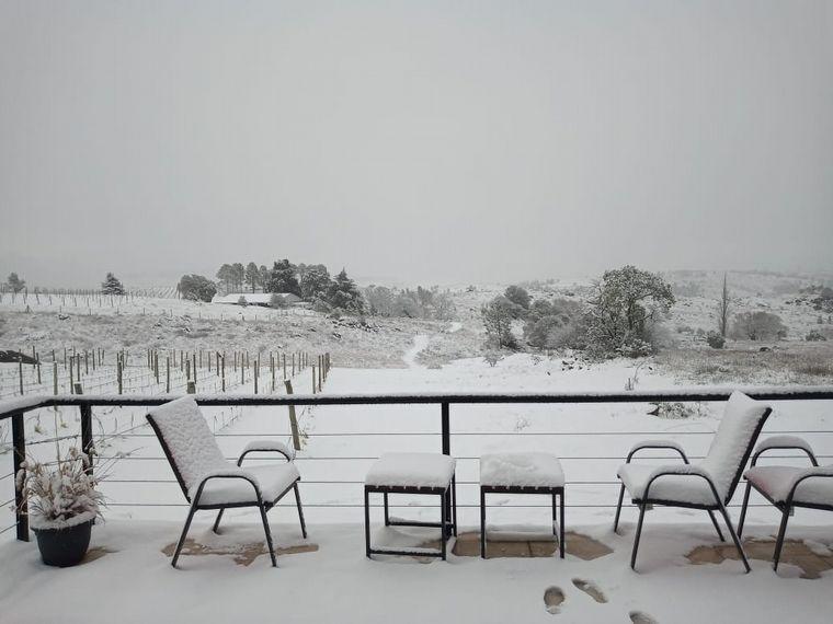 FOTO: Nieve en viñedos de Córdoba